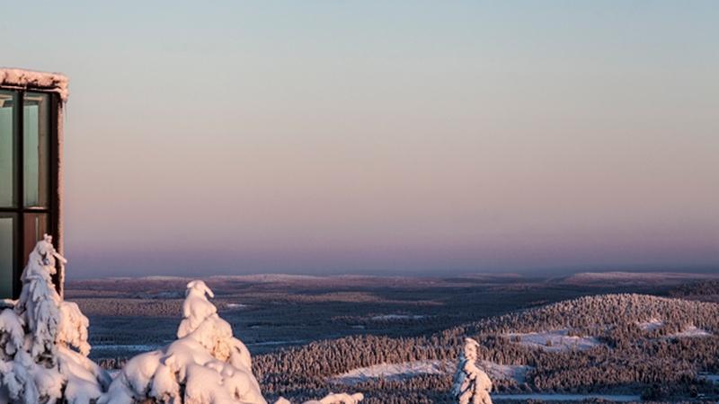 kotkanpesä_tammikuu_2013-17