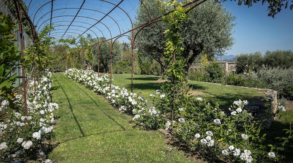 Dimension Terrain De Petanque Maison mas des fleurs | luxury villa in provence | edge retreats