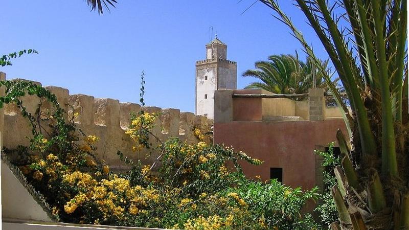 Luxury Properties Essaouira - Riad Tamara